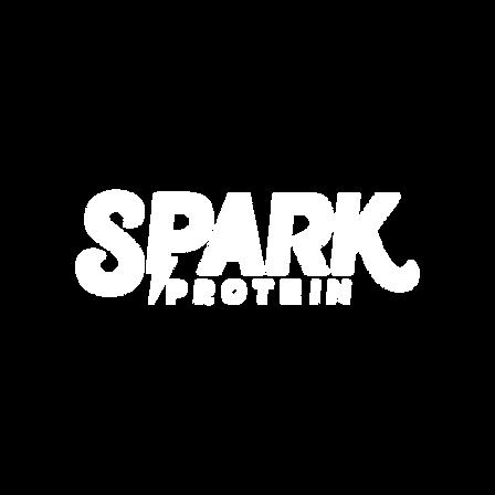 Spark-Logo_Transparent_White.png