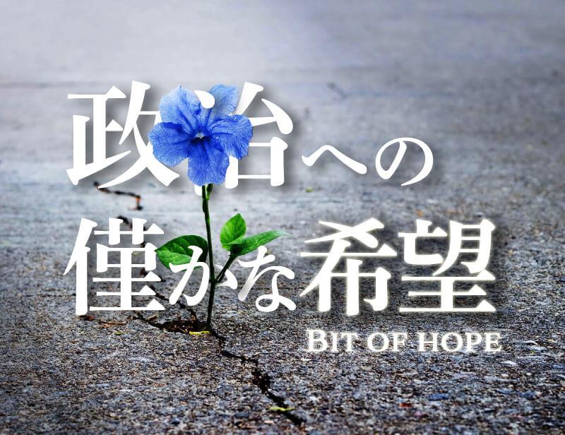 政治への僅かな希望