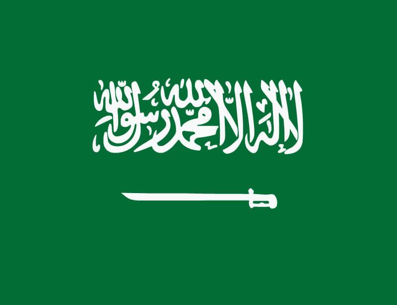 サウジアラビア王家の悩み
