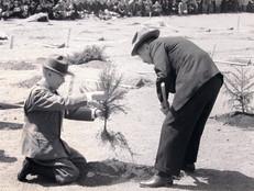 昭和天皇と全国植樹祭
