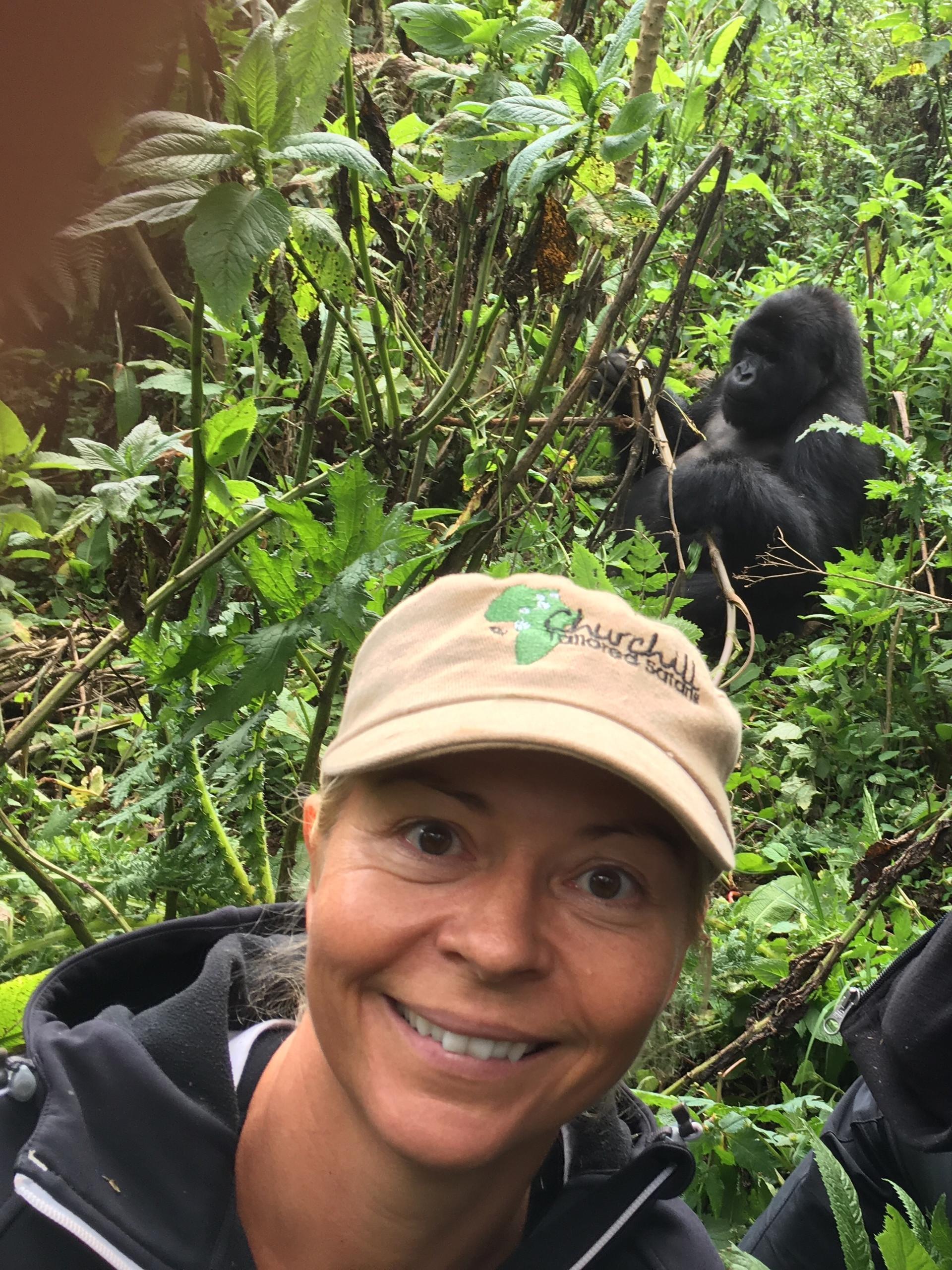 Begegnung mit Berggorillas in Uganda