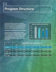 Program Structure Graphic.JPG