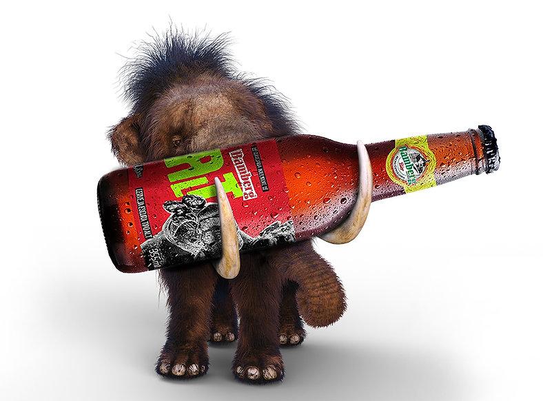 Cerveja Artesanal - Clube de Cerveja