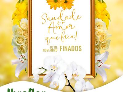 Finados fomenta o já aquecido mercado de flores