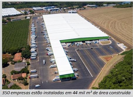 CEAFLOR amplia participação da região de Holambra no mercado nacional de flores