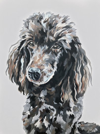 40 x 30, Acrylic on Canvas