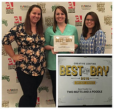 Best Of The Bay 2016 Critics Choice Best Poodle Cut