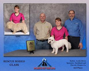 3rd Place Rescue Rodeo  Atlanta Pet Fair 2018 Leslie Dover
