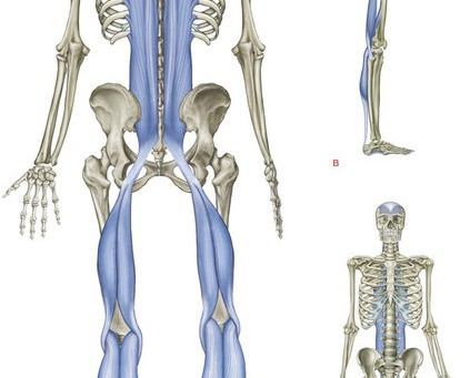 Are Tight Hamstrings Linked to Plantar Fasciitis?