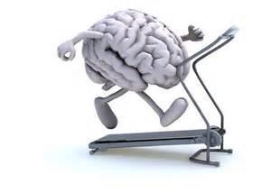 C'est la rentrée! Réservez vite vos sessions de gym cérébrale!