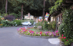 Fern Grove Cottages