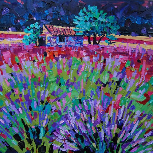 CARD - Lavender in Provence