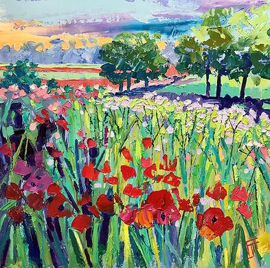 June Poppies 40x40cms.jpg