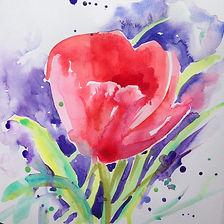 CF tulips.jpg