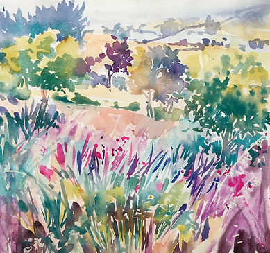 Corbieres SW France watercolour 25 x 25c
