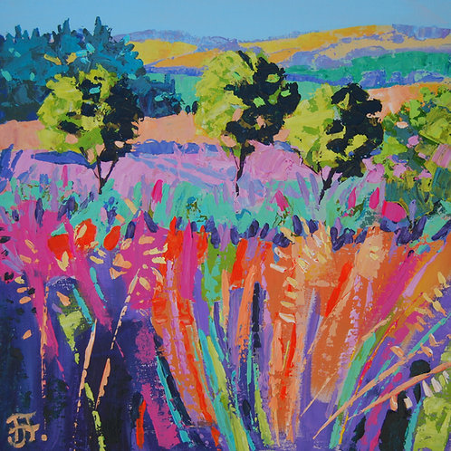 CARD - June in the Corbieres