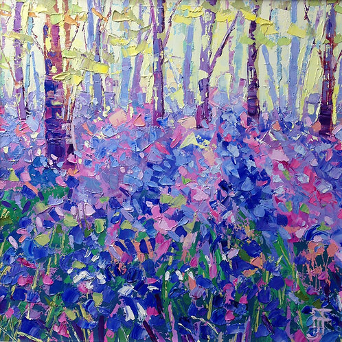 CARD - Bluebell Woods