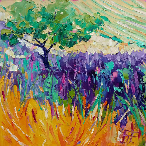 CARD - Lavender Field, Provence