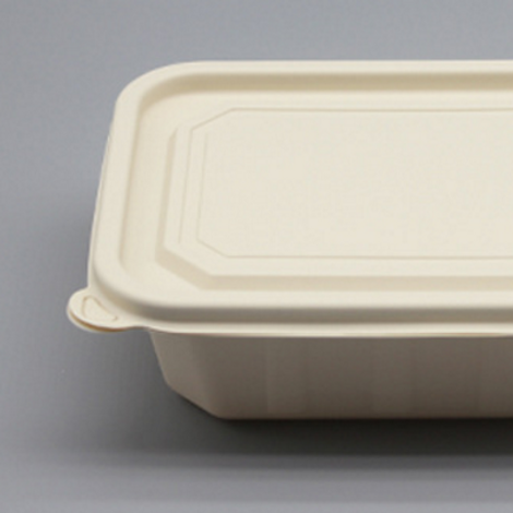 Compostable Corn Starch Food Container w/LId  100pcs