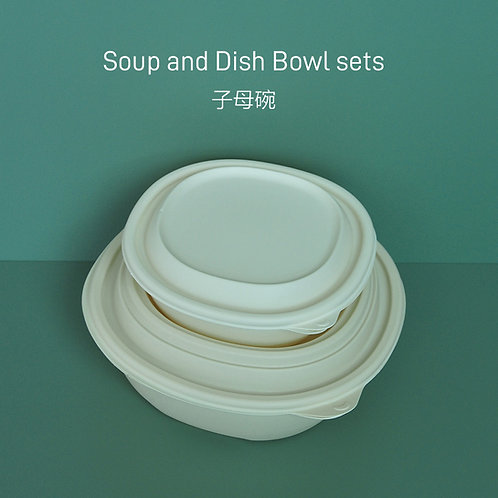 (STOCK) Compostable Plant-based Bowl