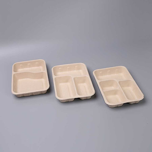 (STOCK) Biodegradable  bagasses food container