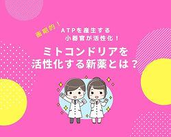 51ミトコンドリア新薬.jpg