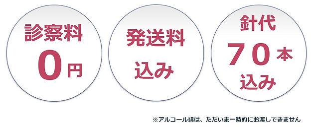 送料0円→込みに表記変更.jpg