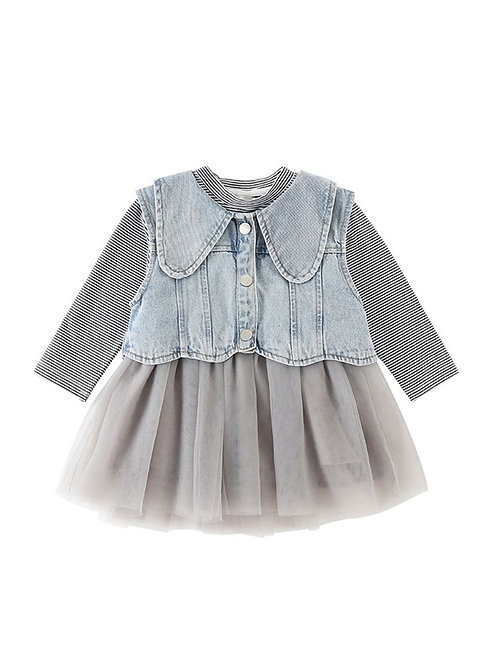 STORMY DENIM VEST + MESH DRESS SET