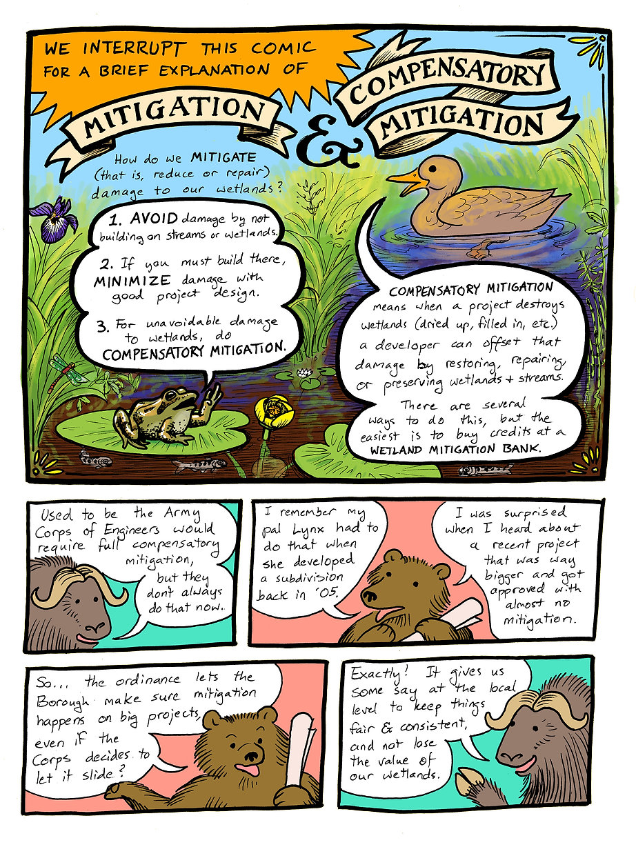Wetlands Graphic Page 2