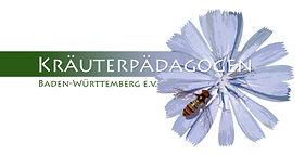 Kräuterpäd Logo.jpg