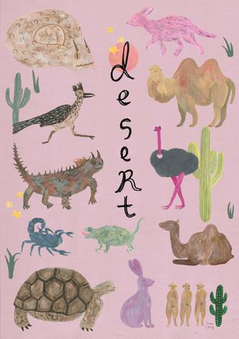 save desert animals_insta.jpg