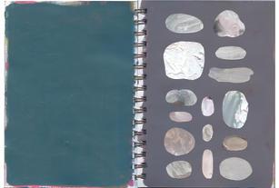thepalettebook_1.jpg
