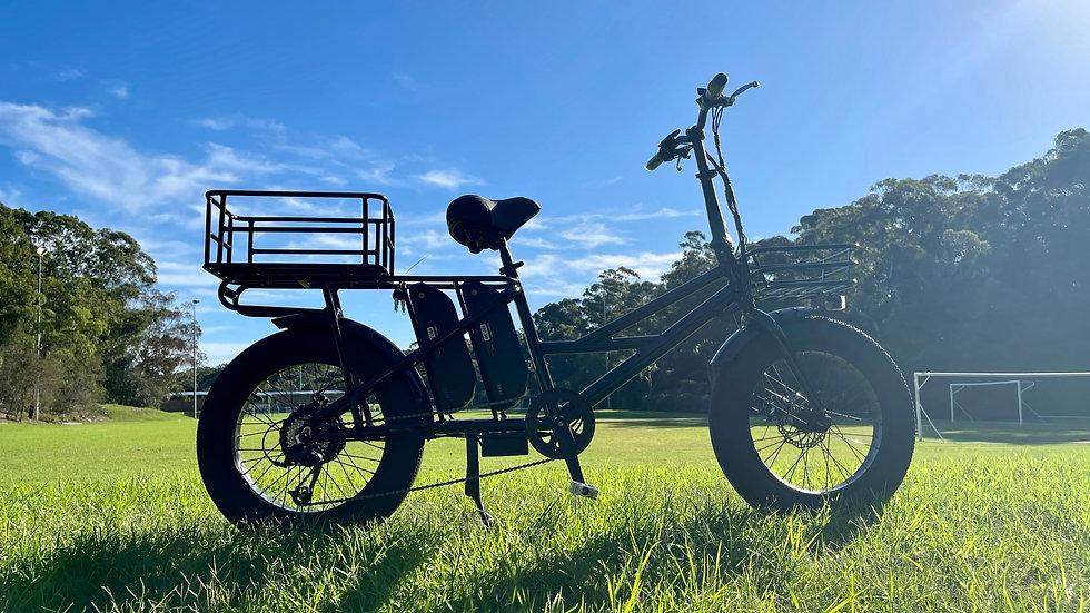 KST Cargo Bike Dual-battery Fat Tire 48v500w