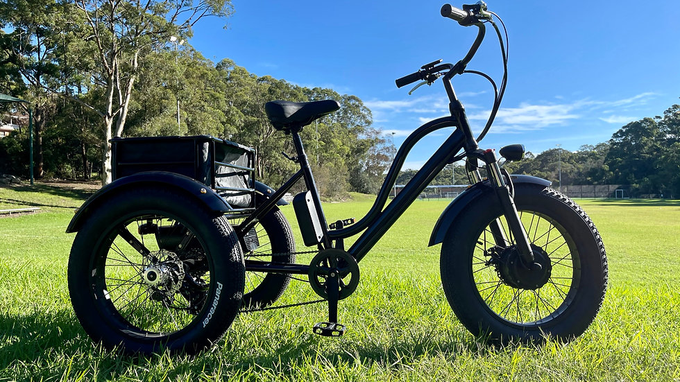KST Electric Trike Bike Fat Tire 48V20AH