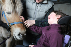Horse Therapy