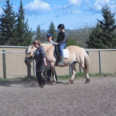 Horse Therapy | Calgary | 4:13