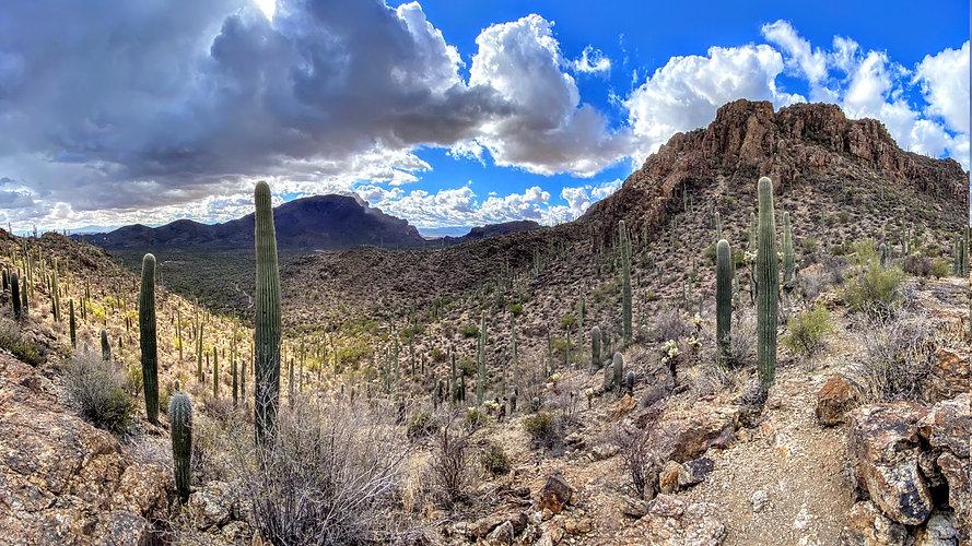 desert-5888539.jpg