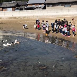 「秋のビーチクリーン@鵜島」の募集を開始しました。