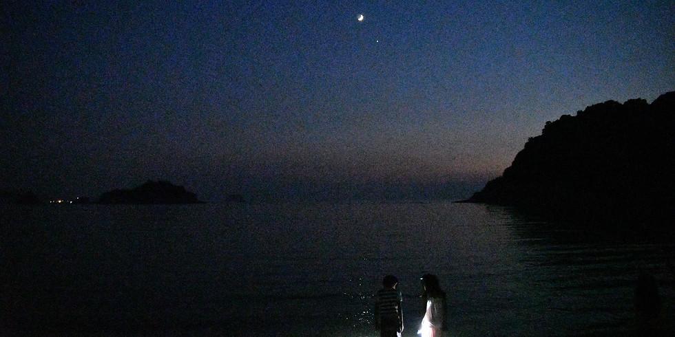 (終了)夜の海岸生き物観察 2021年