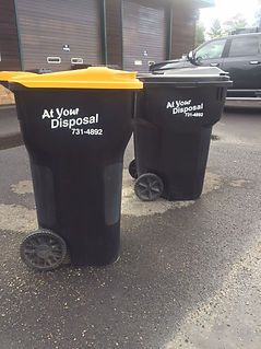 At Your Disposal curbside bins