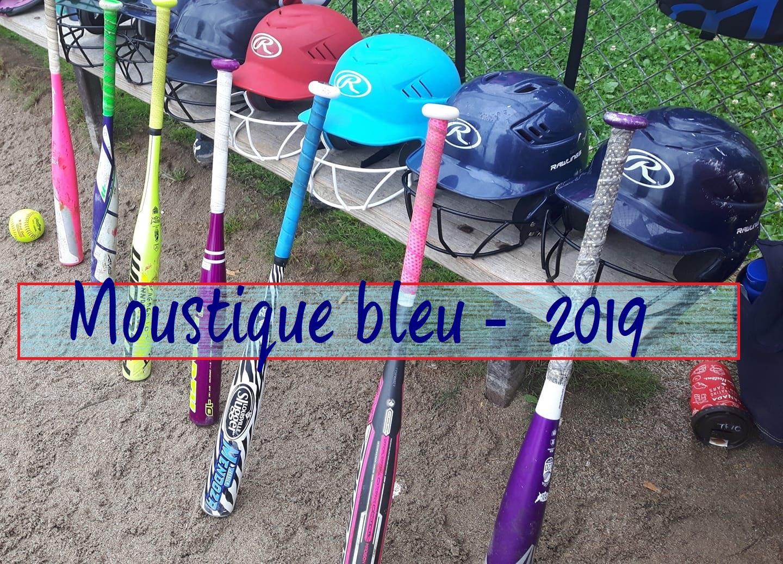 Moustique bleu2019