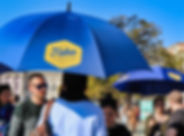 Umbrellas Two-min.jpg