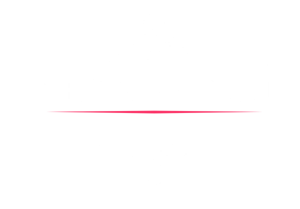 Phenomenal Events Logo (black).png