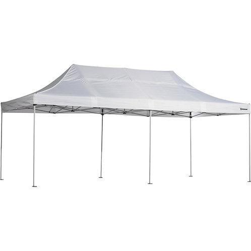 10 x 20 Canopy