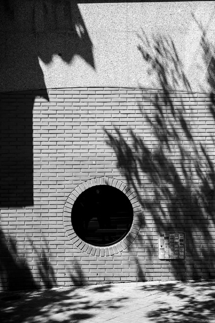 Black hole in brick wall