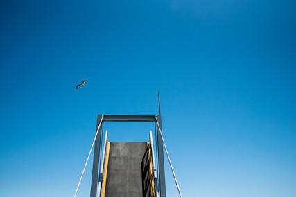 Open the bridge for the seagull