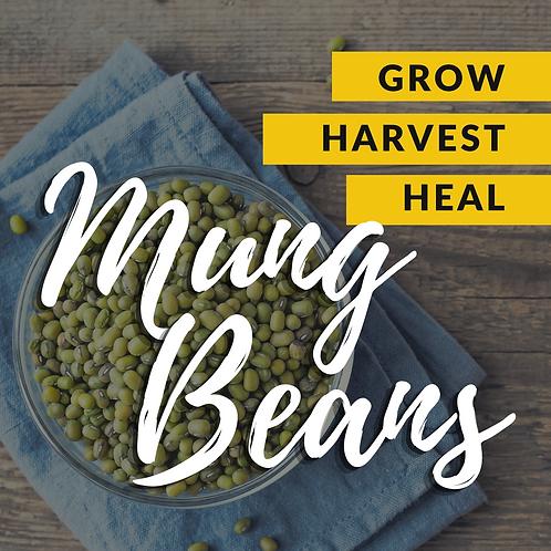 Heal Harvest Grow: Mung Bean Edition