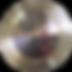 hainan-logo_edited.png