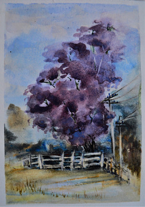 Why Paint in Watercolour?