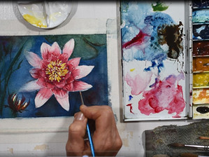 Term 4 art classes - starting in October!
